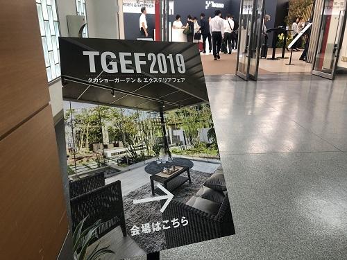 TGEF2019