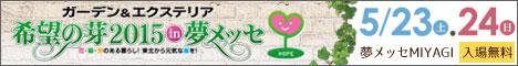 banner_468-6091