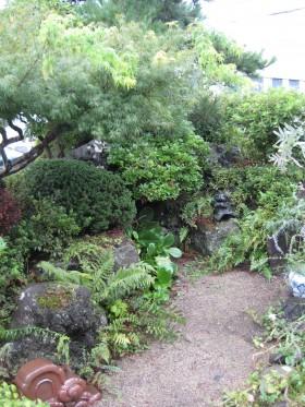 庭ビフォー 3