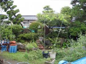 庭 ビフォー